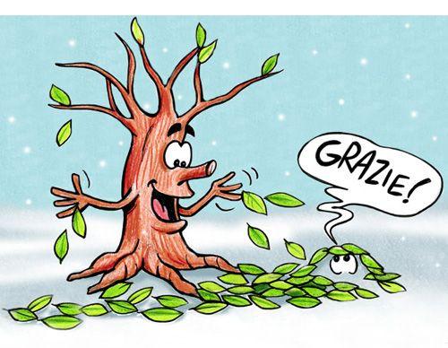 Perché gli alberi perdono le foglie_Maria Cerbelli