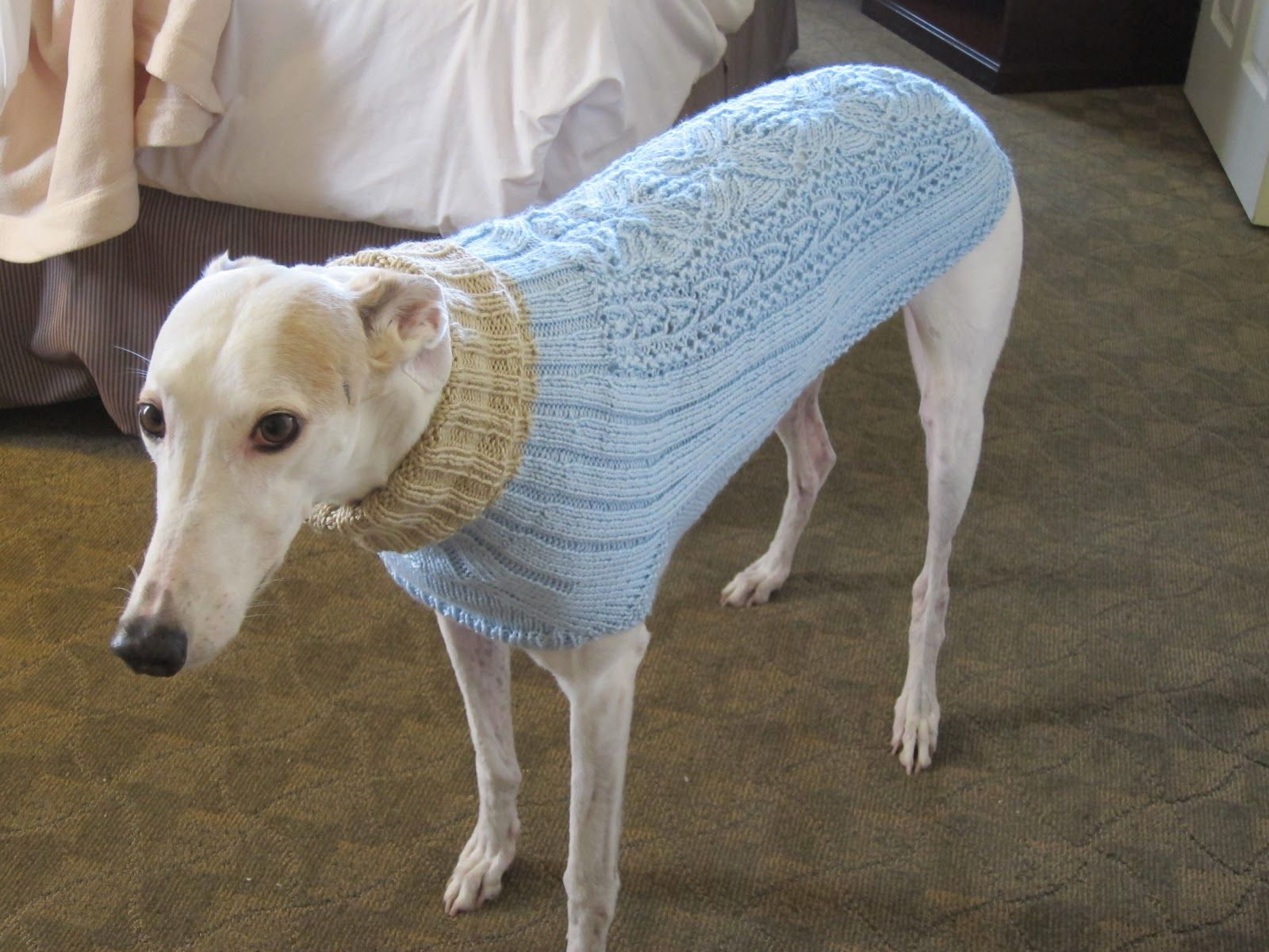 Greyhound sweaters greyhound knit sweaters pets pinterest greyhound sweaters greyhound knit sweaters bankloansurffo Images