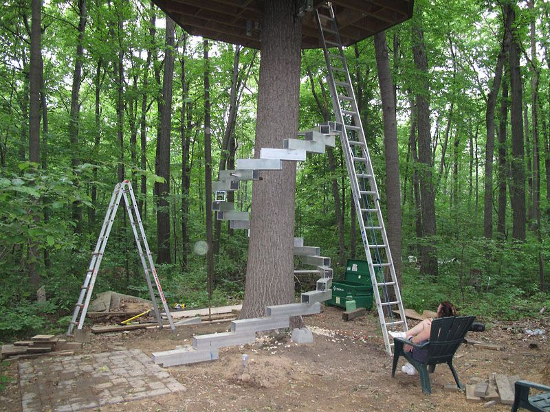Elegant Tree House Time (pictures)   Page 4