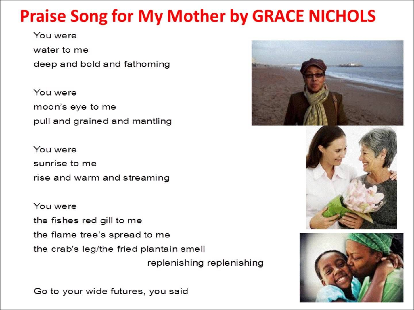 praise song for my mother poem