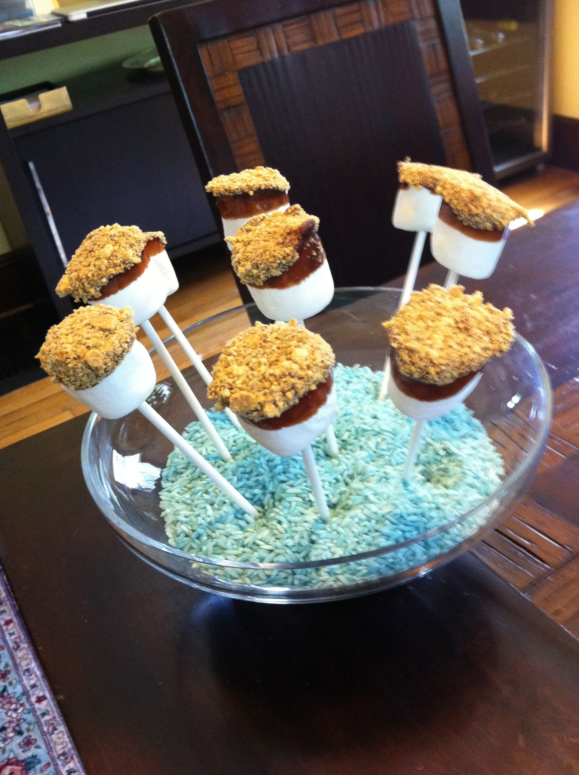 11 Year Girl Bedroom Decoration Ideas: Choc Dipped Marshmallow & Graham Cracker Crumbs.... Smore
