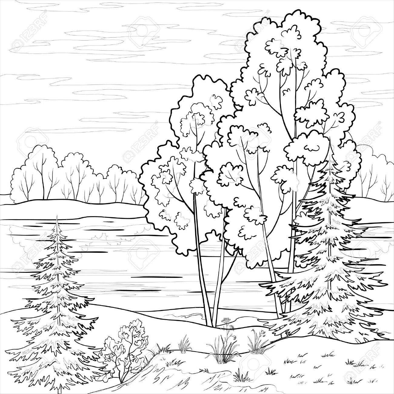 Dibujos Para Colorear De Naturaleza Paisaje Bosque ...