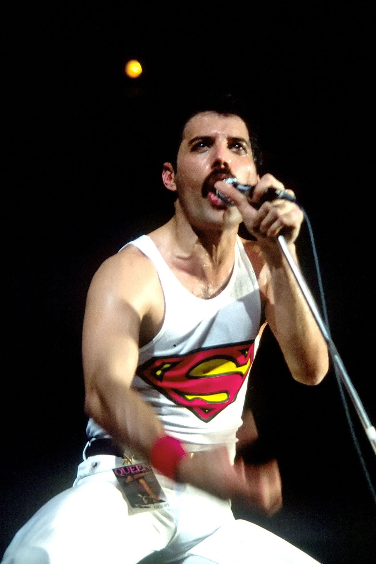 Freddie Mercury Q U E E N In 2019 Freddie Mercury
