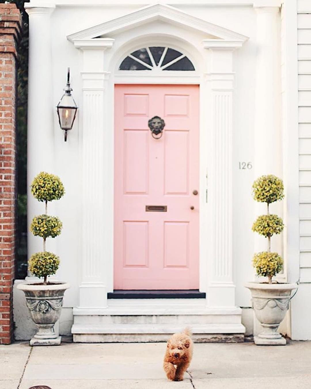 Charming A Fabulous Pink Door In One Of My Favorite Cities, And That Puppy Is So  Adorable! UPDATE: Door Color Is Peach Mimosa By