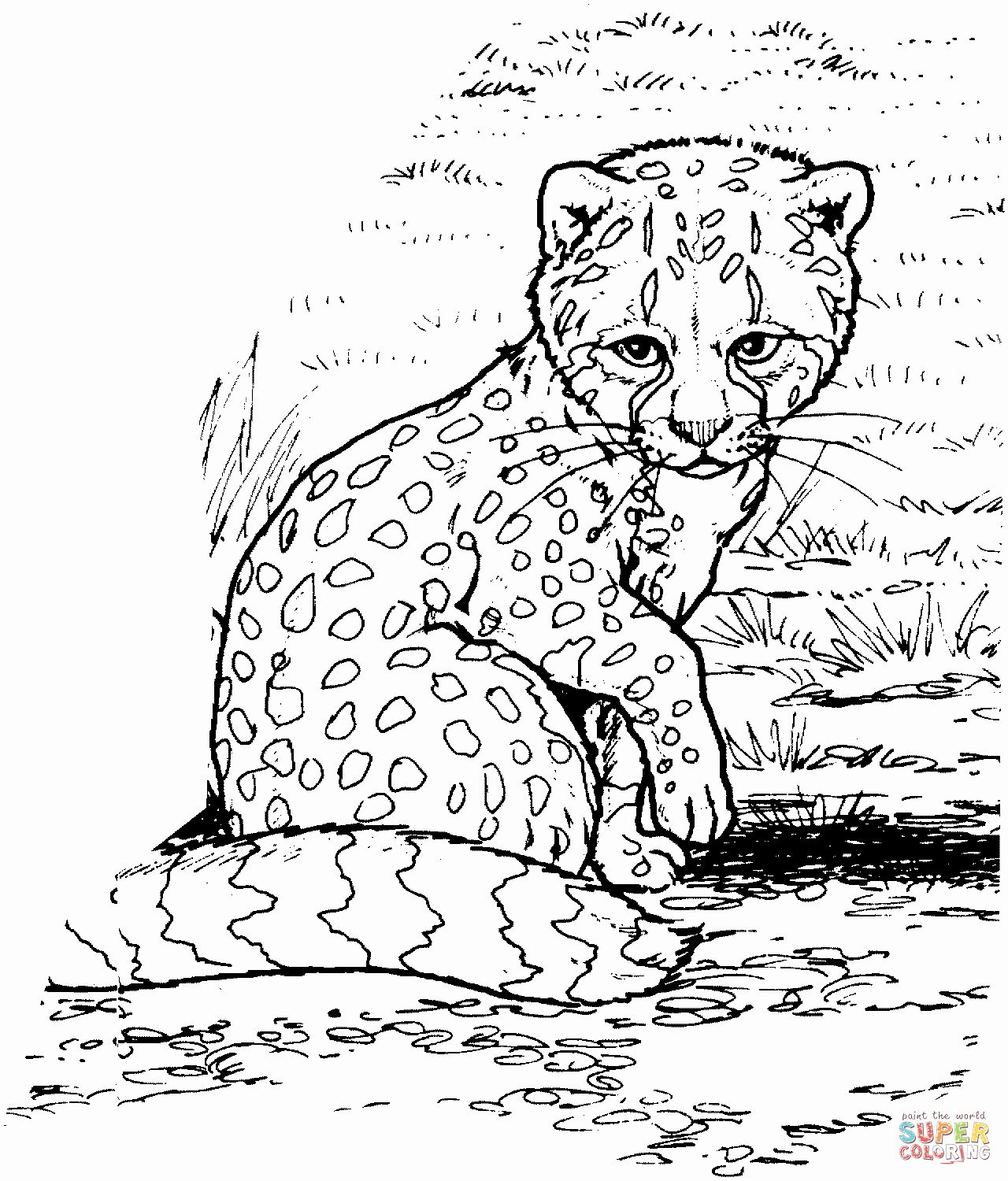 Cute Baby Animal Coloring Pictures Fresh Cute Baby Cheetah