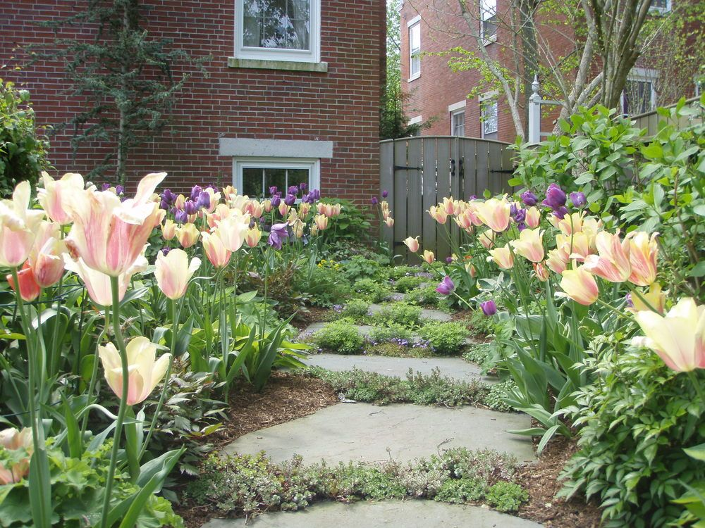 Pin On Landscapers And Gardeners Who Plant Our Plants