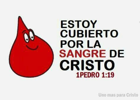 Sangue que salva