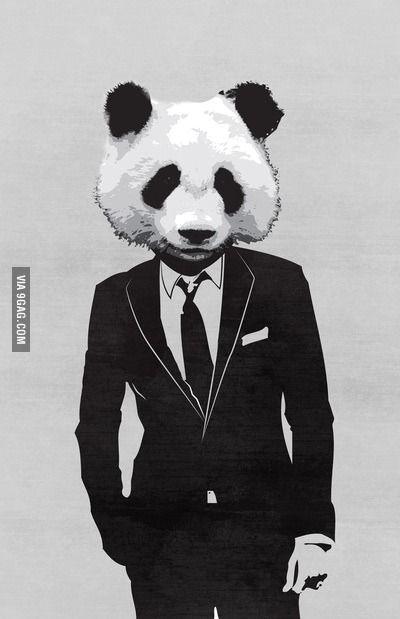 Iphone 5c Wallpaper Panda Background Panda Images Cute Panda Wallpaper