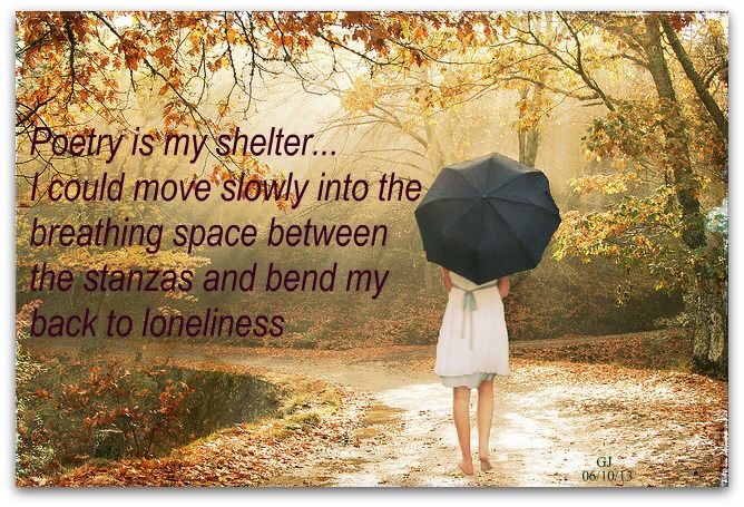 Poetry is my shelter