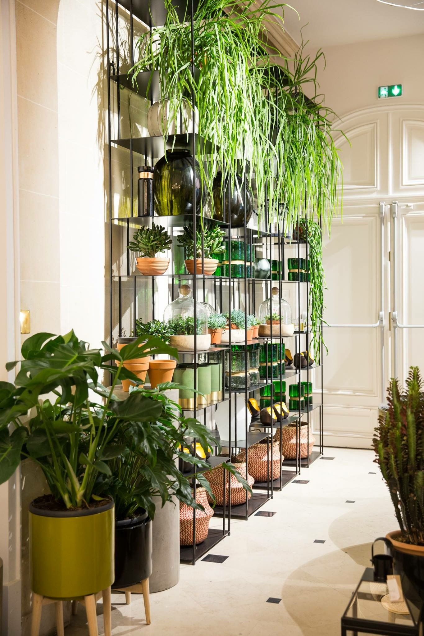Plant Shelving Indoor Pin By Wonkchic On Sanctuary In 2019 Indoor Plants