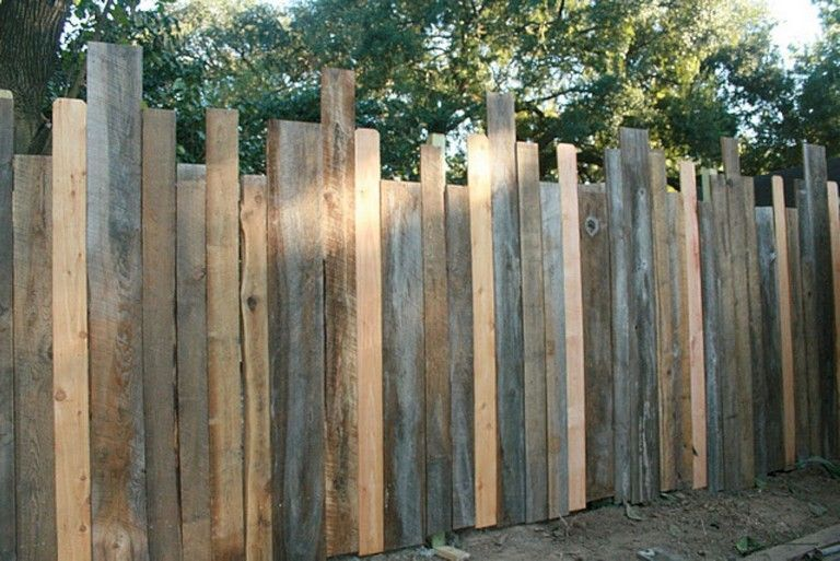 13 Marvelous Privacy Fence Vines Ideas Diy Privacy Fence