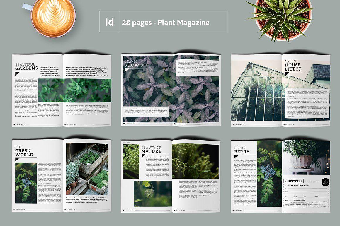 PLANTS Magazine / Portfolio #Specifications#paragraph#Paragraph#amp