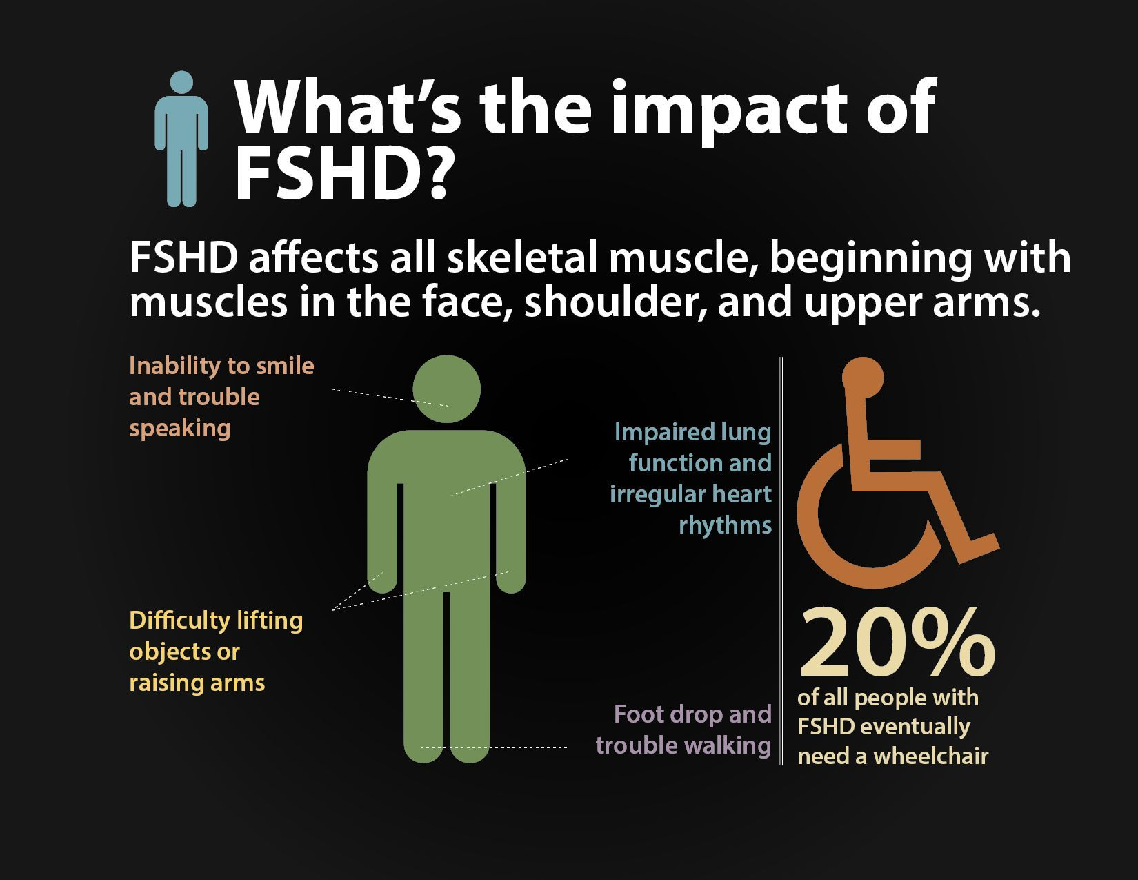 FSHD affects all skeletal muscle, beginning with muscles in