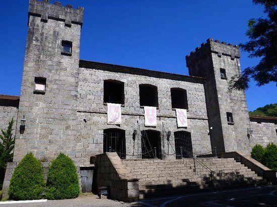 museu municipal caxias do sul - Pesquisa Google