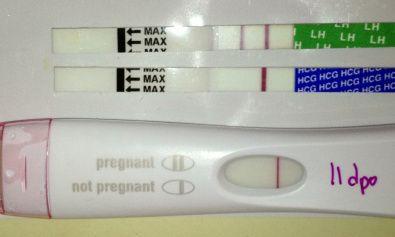 Pin on Pregnancy Test