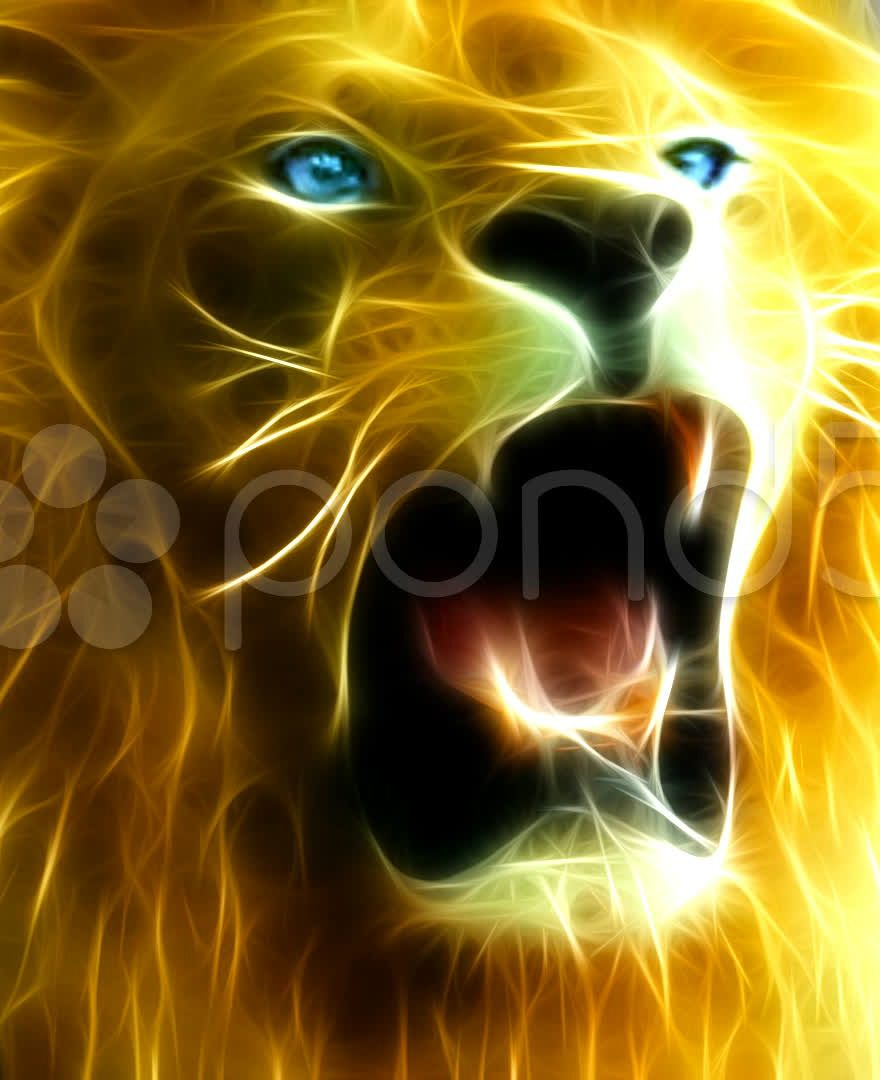 Fractal Lion Roaring Lion S Eyes Lion Looks Lion Attacks Lion S Grin Lion Closeup Lion Slow Motion Lion Ghost Lion Lion Eyes Fractals Lion Illustration