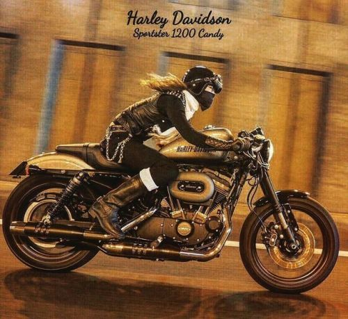Harley-Davidson Cafe Racer and Cafe Racer Girl (Candy50s) #caferacergirl #bikergirls #motorcyclesgirls #chicasmoteras | caferacerpasion.com
