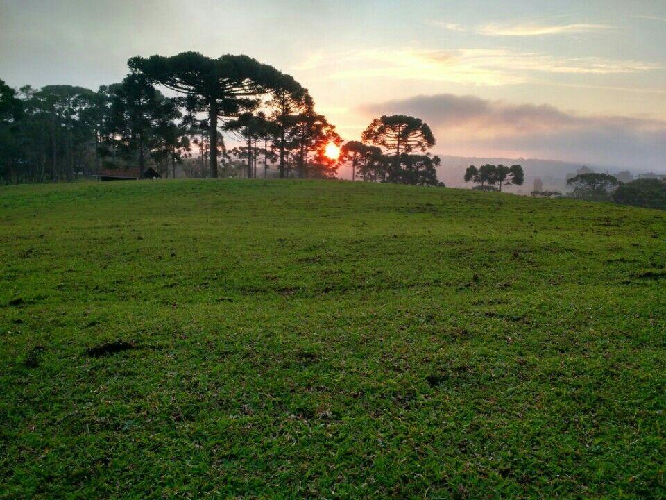 Campo Alegre Santa Catarina fonte: i.pinimg.com