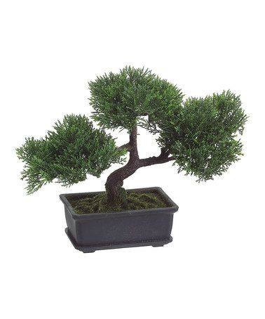 Take a look at this 9 39 39 cedar bonsai tree by allstate for Allstate floral and craft