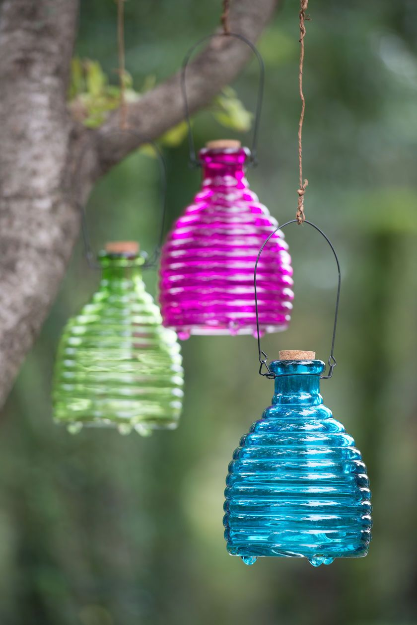Glass Wasp Trap Decorative and Effective