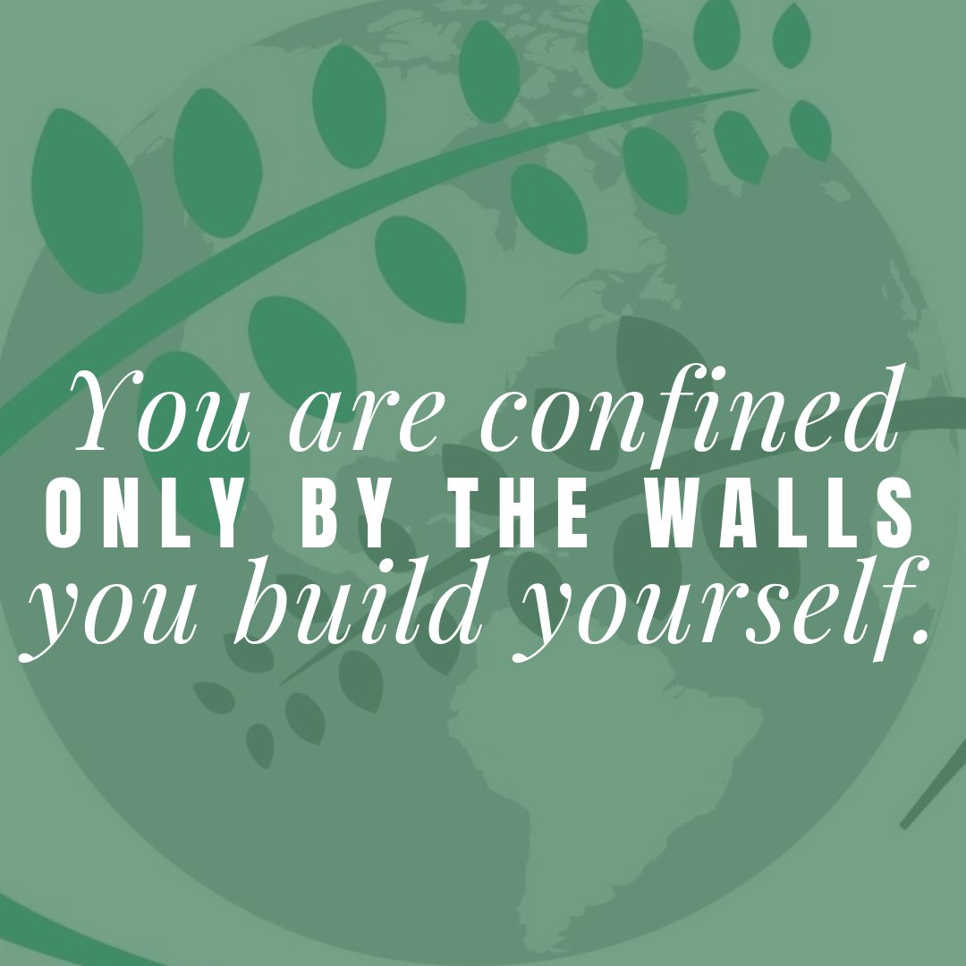 41+ Build youself information