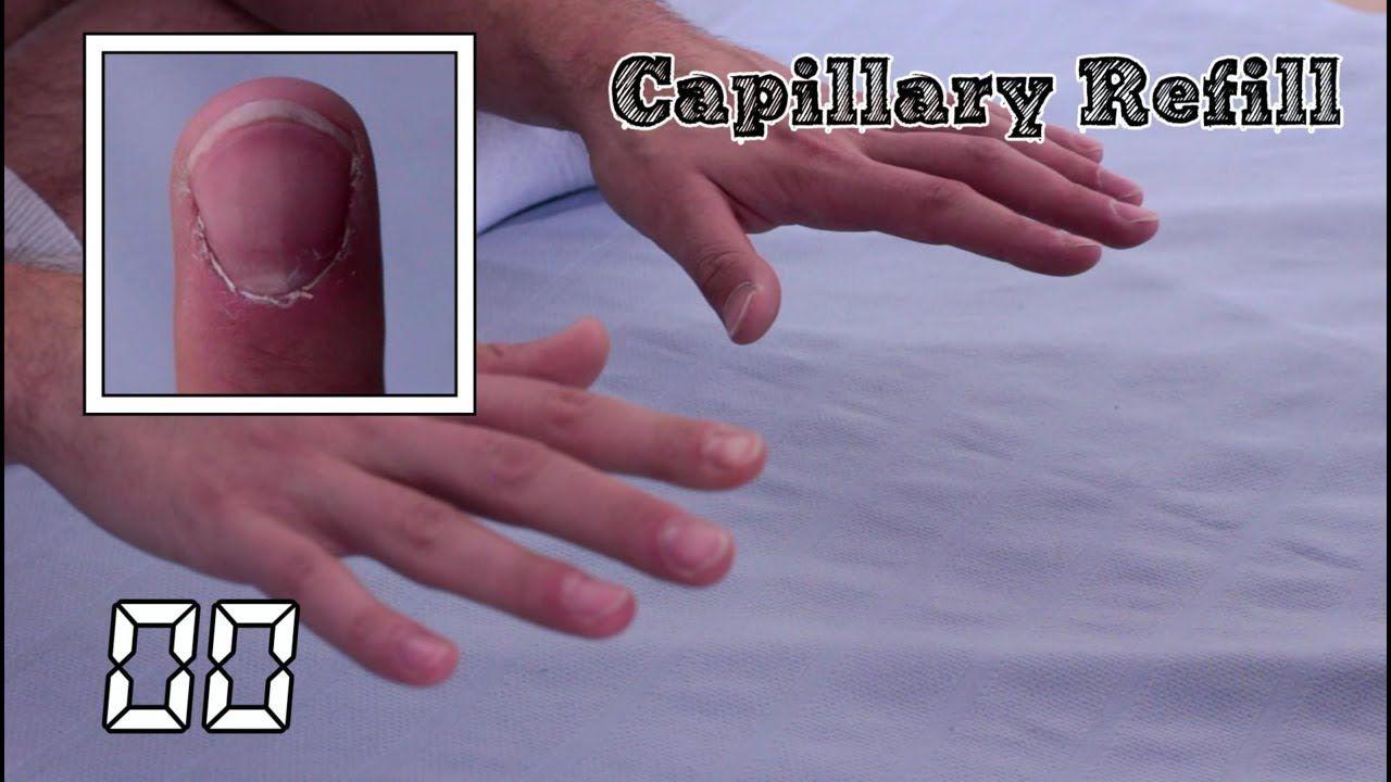 HippocraTV: In the Hands
