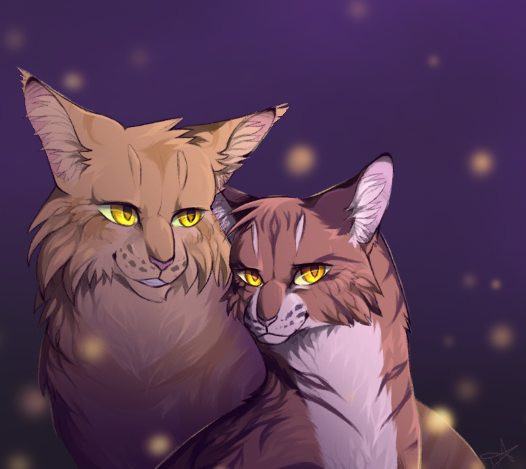 afb577ffd2229 Mothwing and Leafpool by SsilverBeeze | Warriors | Warrior cats ...