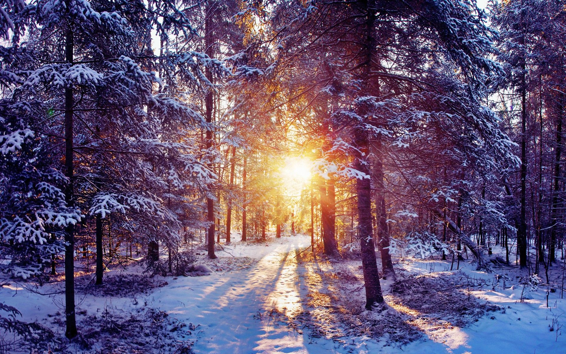 Top Wallpaper High Quality Winter - 8be9c8cbc5163e291cb10acf8d9863ae  Collection_585819.jpg