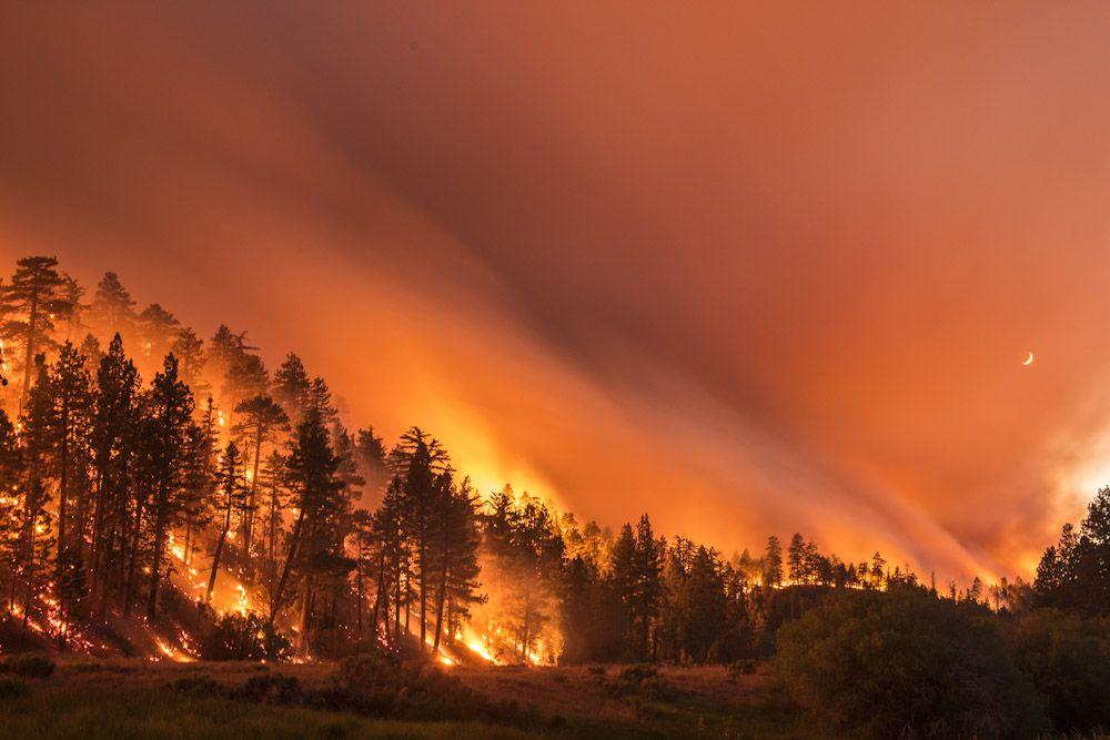 Terra Flamma Stunning Long Exposure Photographs Of California Wildfires By Stuart Palley Landschaft Wald Szene