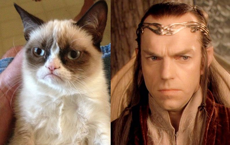 Hobbit_cats