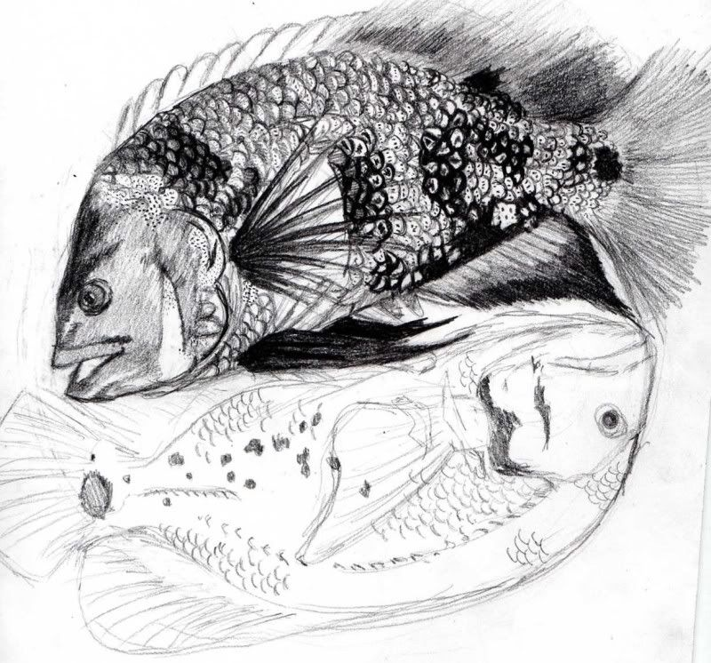 Oscar Fish Fun Ideas Design My Tattoo Fish Tattoos Oscar Fish
