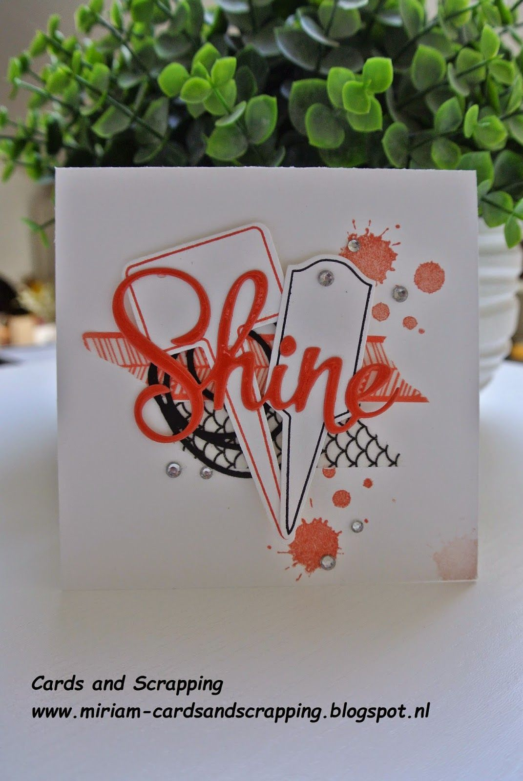 Handpicked framelits Stampin Up by Cards and Scrapping