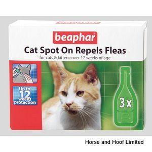 Beaphar Cat Spot On 12 Week X 6 Cats And Kittens Cat Fleas Cat Health Care