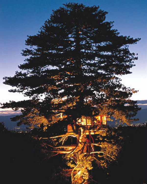 Located almost close to the top of a 130-foot Austrian pine, the Sky High tree house at Saleve Mountain in France, offers a breathtaking view of Lake Geneva. This high structure is supported by a hidden ring-shaped base and can be accessed using a spiral stairway winding up to 70 feet above the ground.