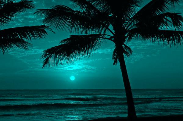 Hd Wallpaper Teal Sunset Relay In 2019 Sunset Beach Hawaii Beach