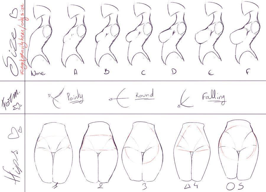 The Female Body ♡ | How To Draw | Pinterest | Pecho, Anatomía y Dibujo