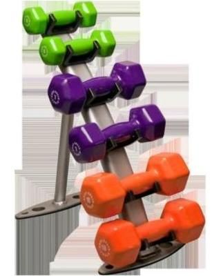 cd78aba87c9 The Body Solid Dumbbell Rack is small enough for a home gym