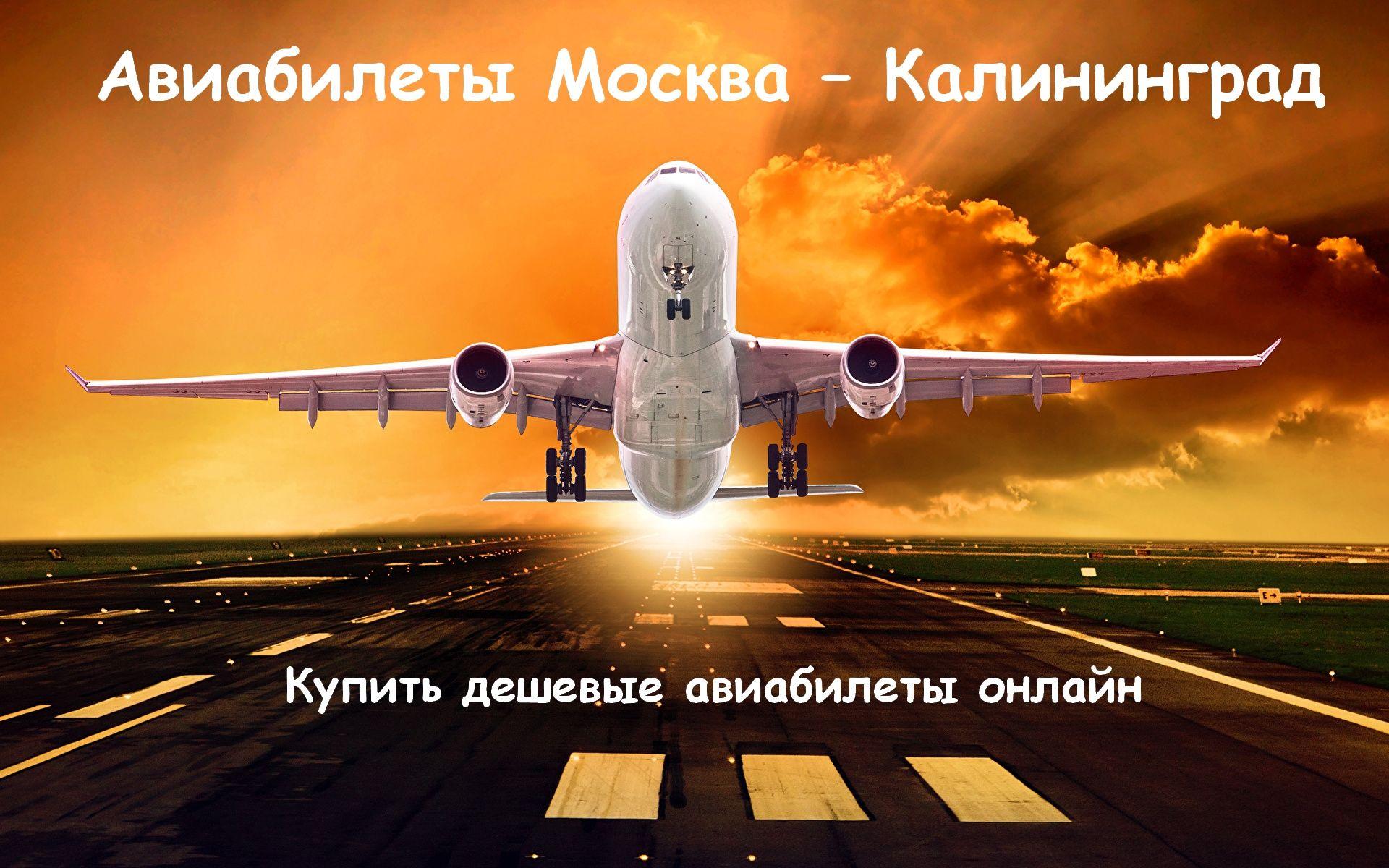 Дешевые билеты на самолет в москву с калининграда мурманск стокгольм билеты на самолет