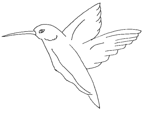 Lying Birds Colouring Pages Bird Coloring Pages Coloring Pictures Birds Flying