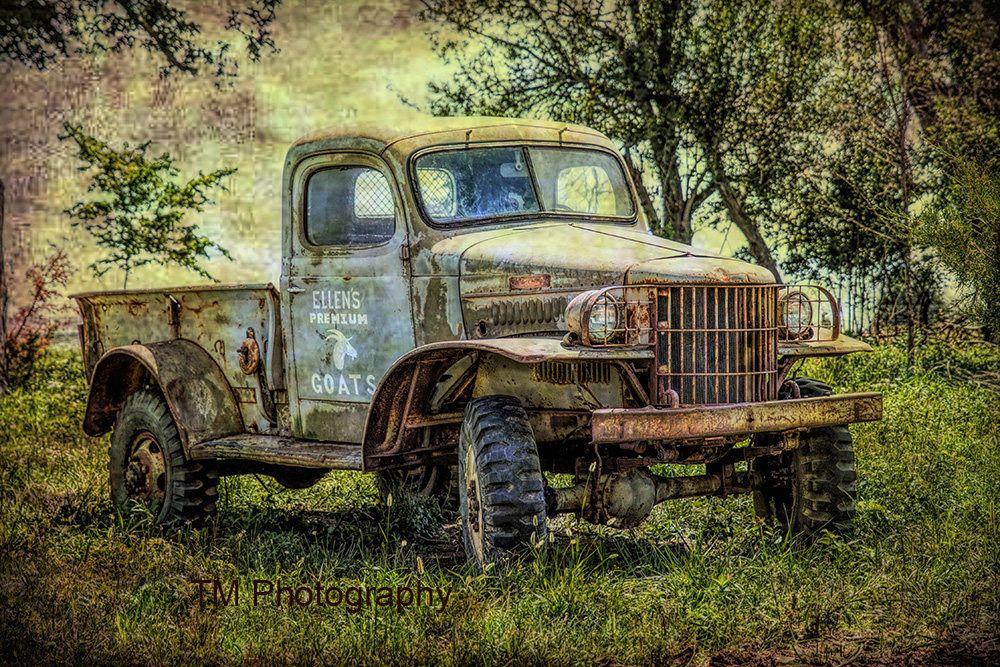 Ellens Premium Goats Old Farming Truck Farming Truck