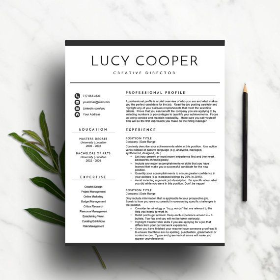 Minimal Resume Template For Word  Cv Template  Professional