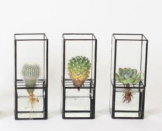 Geometrische Terrarium Glas Wasser Pflanzer von PotteryGreen