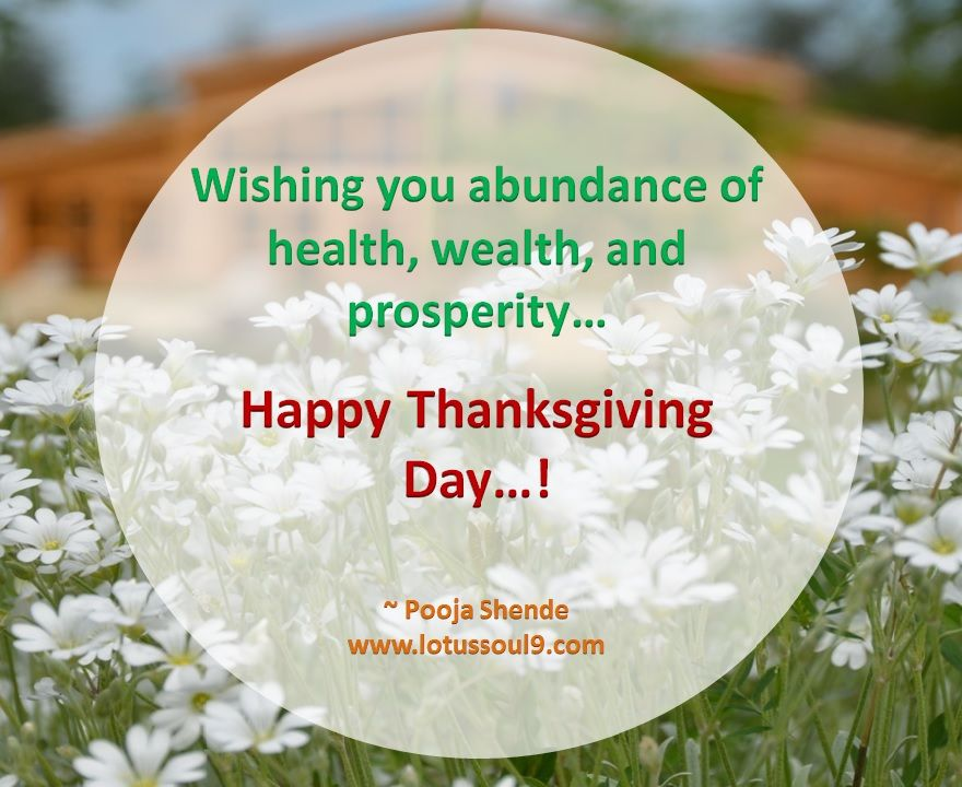 Wishing You Abundance Of Health Wealth And Prosperity Happy Thanksgiving Day Health And Wellness Quotes Health Motivation Inspiration Happy Thanksgiving Day