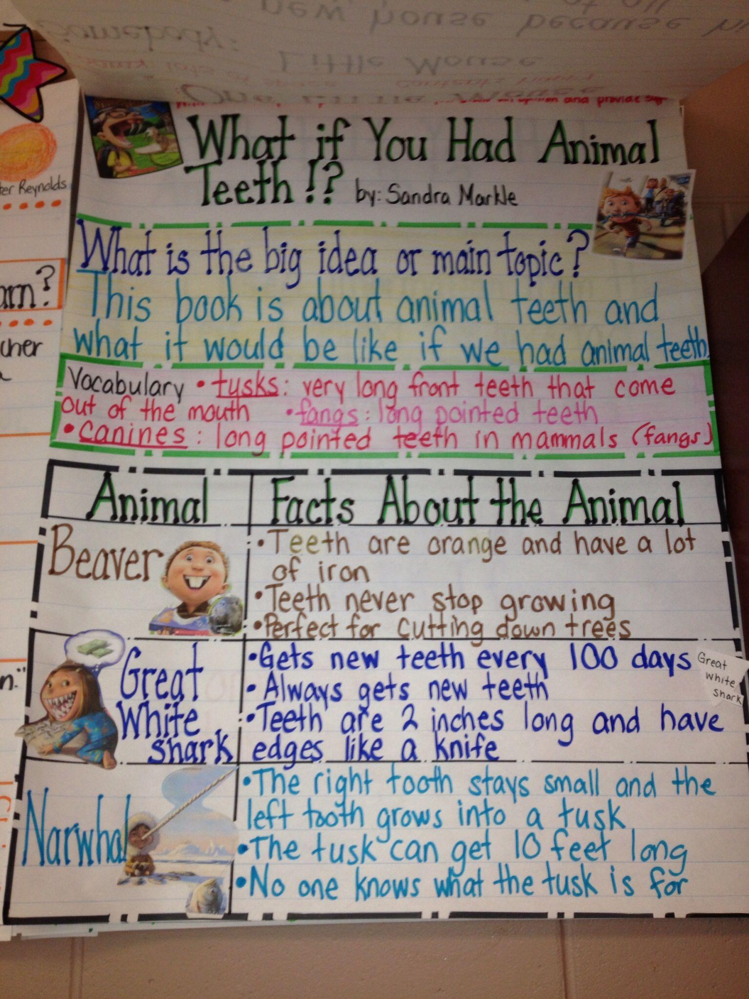 Animal Teeth Anchor Charts Science
