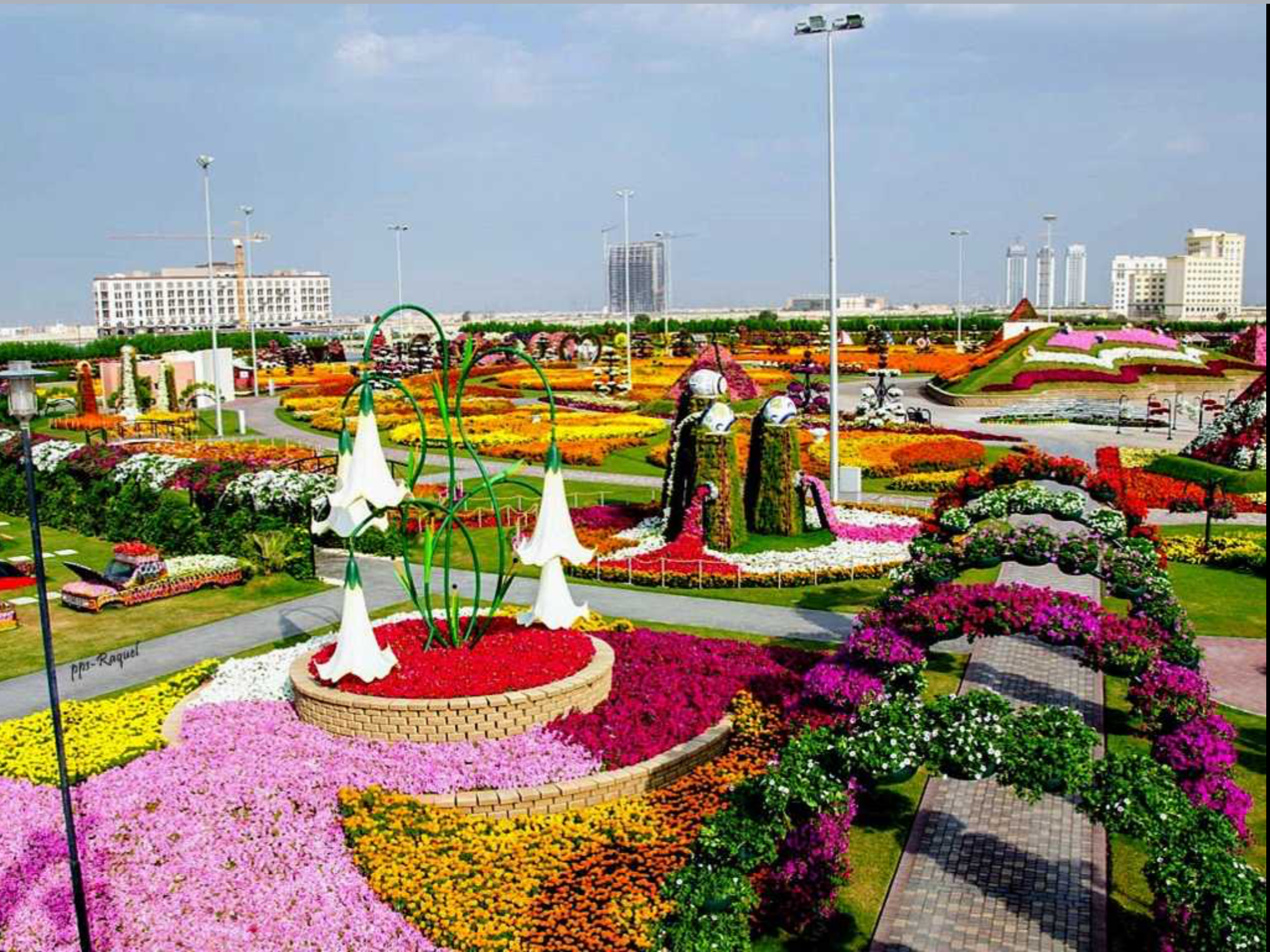 Pin by Booguy on Dubaï Dubai garden, Rockery garden