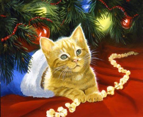 Linda Picken Art Studio / Yellow Kitten in Stocking.jpg