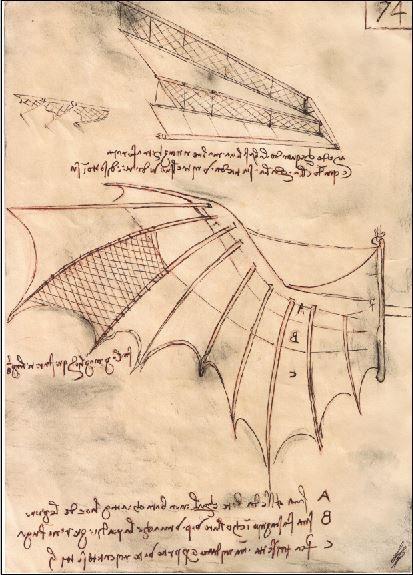 Lukas hat nach Vorlagen diese Zeichnung von Leonardo auf extra dafür gealtertem Papier nachgezeichnet und dann haben wir gemeinsam dieses Motiv digital bearbeitet und ein Shirt-Motiv daraus gestaltet.