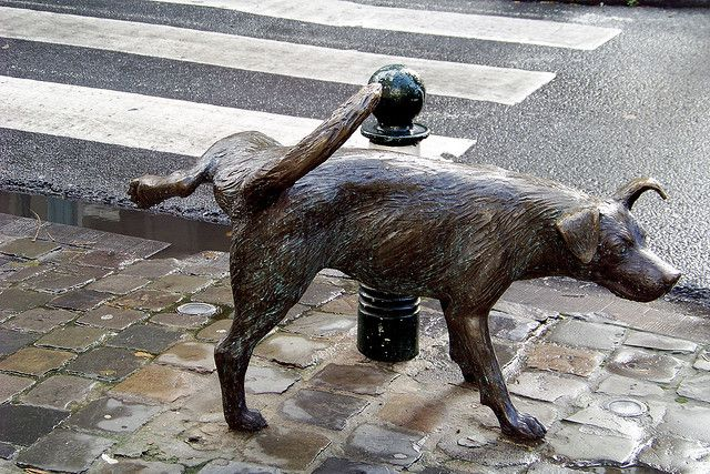 Dog sculpture to pee in Brussels