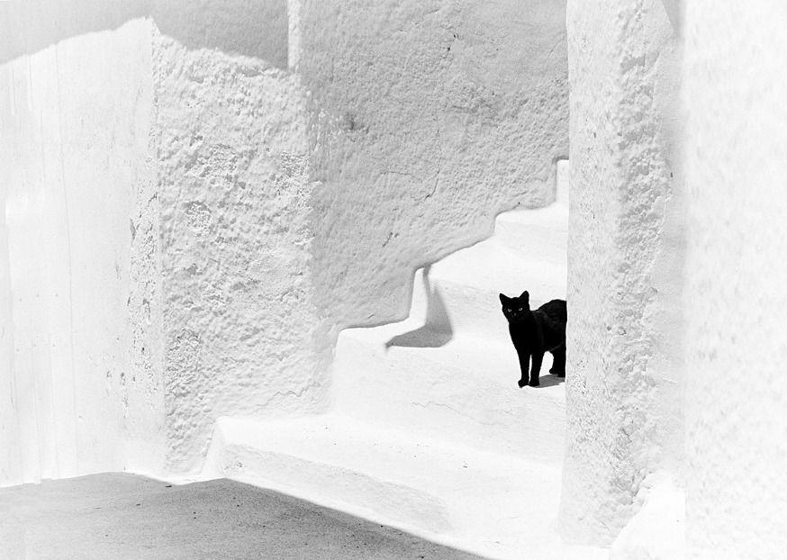 Black and White, Greece by Magali Kermaïdic