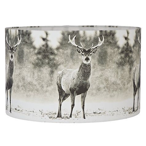 Maybe for the lamp or the lights? John Lewis about £25
